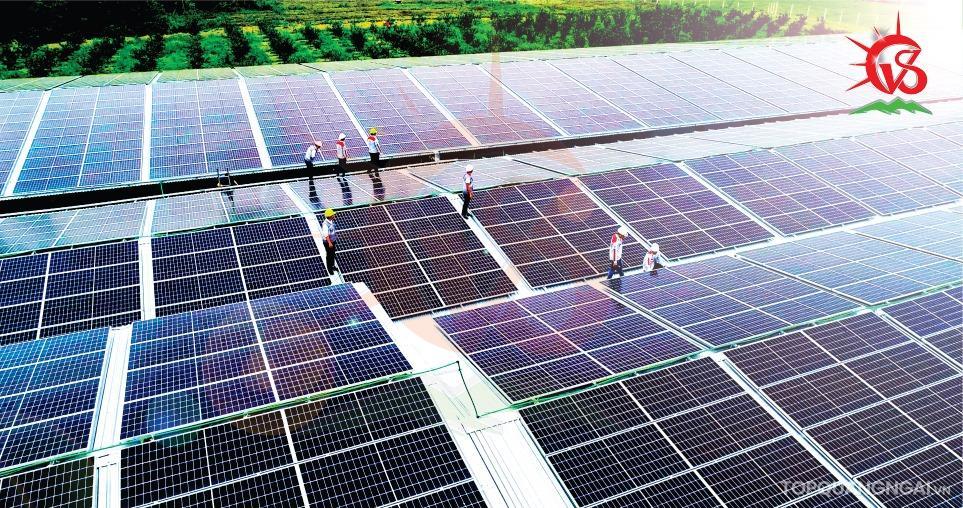 Top 8 địa chỉ lắp điện mặt trời tại Quảng Ngãi uy tín và hiệu quả nhất