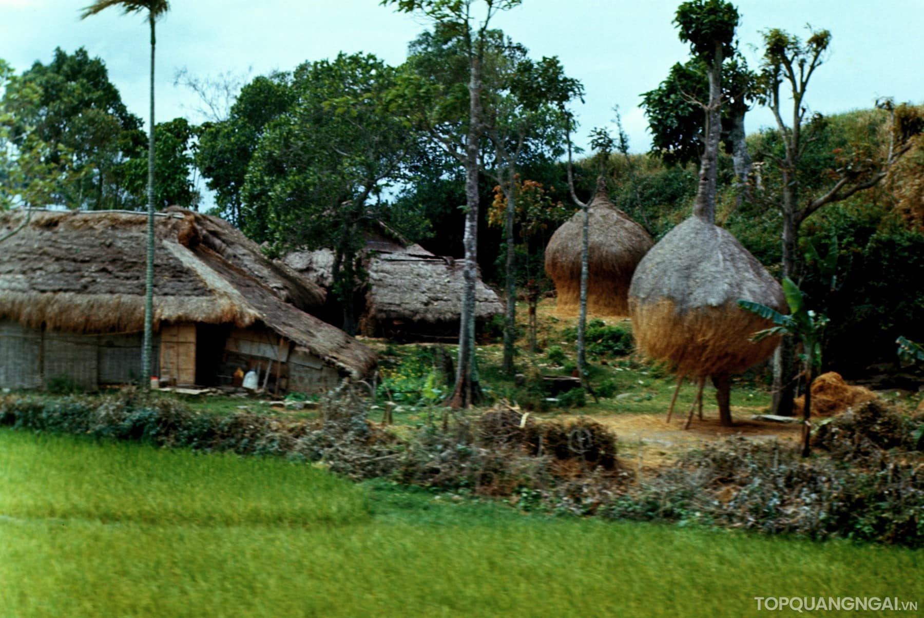 Bộ sưu tập hình ảnh đẹp về Quảng Ngãi năm 1967