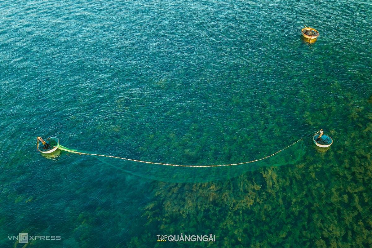Rừng rong biển Quảng Ngãi nhìn từ trên cao